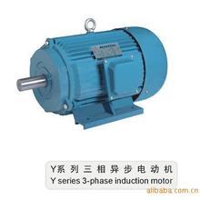 供应Y、Y2、YS系列三相异步电动机(图)