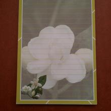 【厂家直销】可爱花朵N次贴 便利贴 便签批发 办公用品