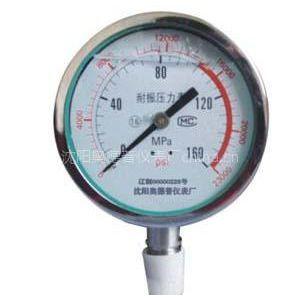 供应沈阳不锈钢压力表|沈阳耐腐蚀压力表|沈阳防腐压力表