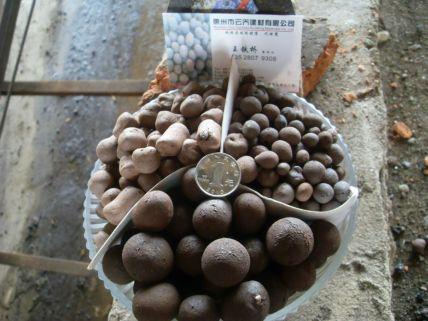 陶粒厂,陶粒价格,陶粒回填,陶粒混凝土