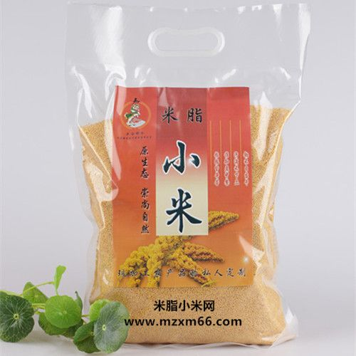 陕北优质米脂黄小米