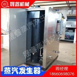 36KW电蒸汽发生器蒸汽发生器蒸汽锅炉生物质锅炉蒸汽发生机