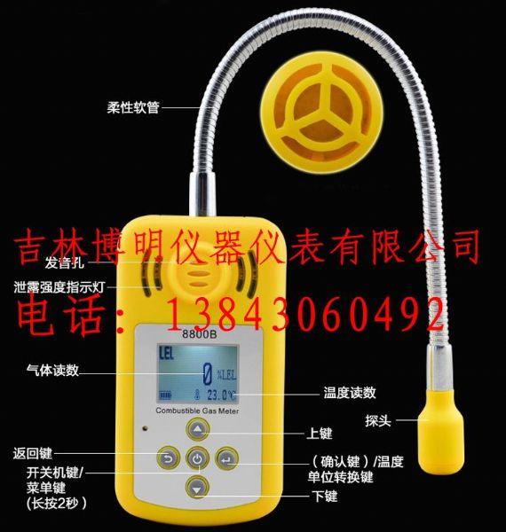 长春天然气检测仪,燃气检测仪BM815B