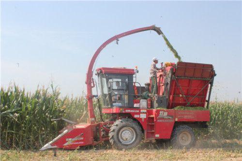 青储玉米秸秆收获机